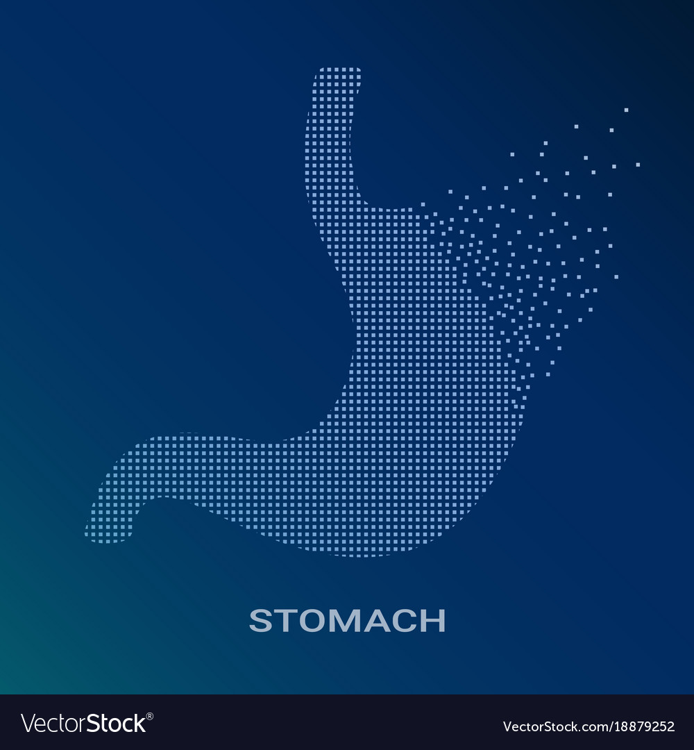 Abstract of human stomach on