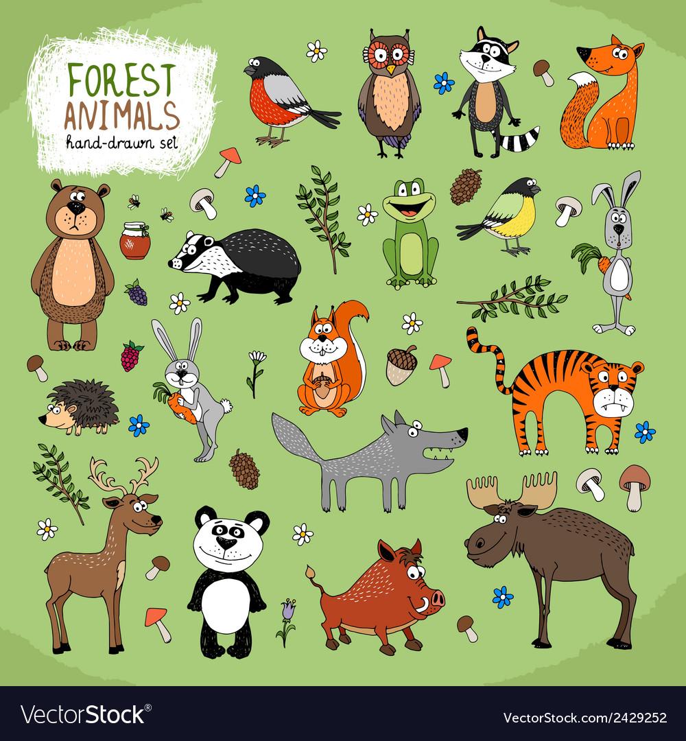 Forest Animals hand-drawn