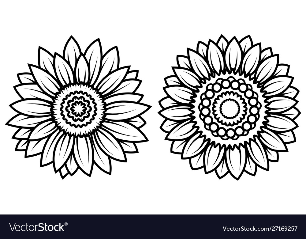 Set stylized sunflowers collection flowers