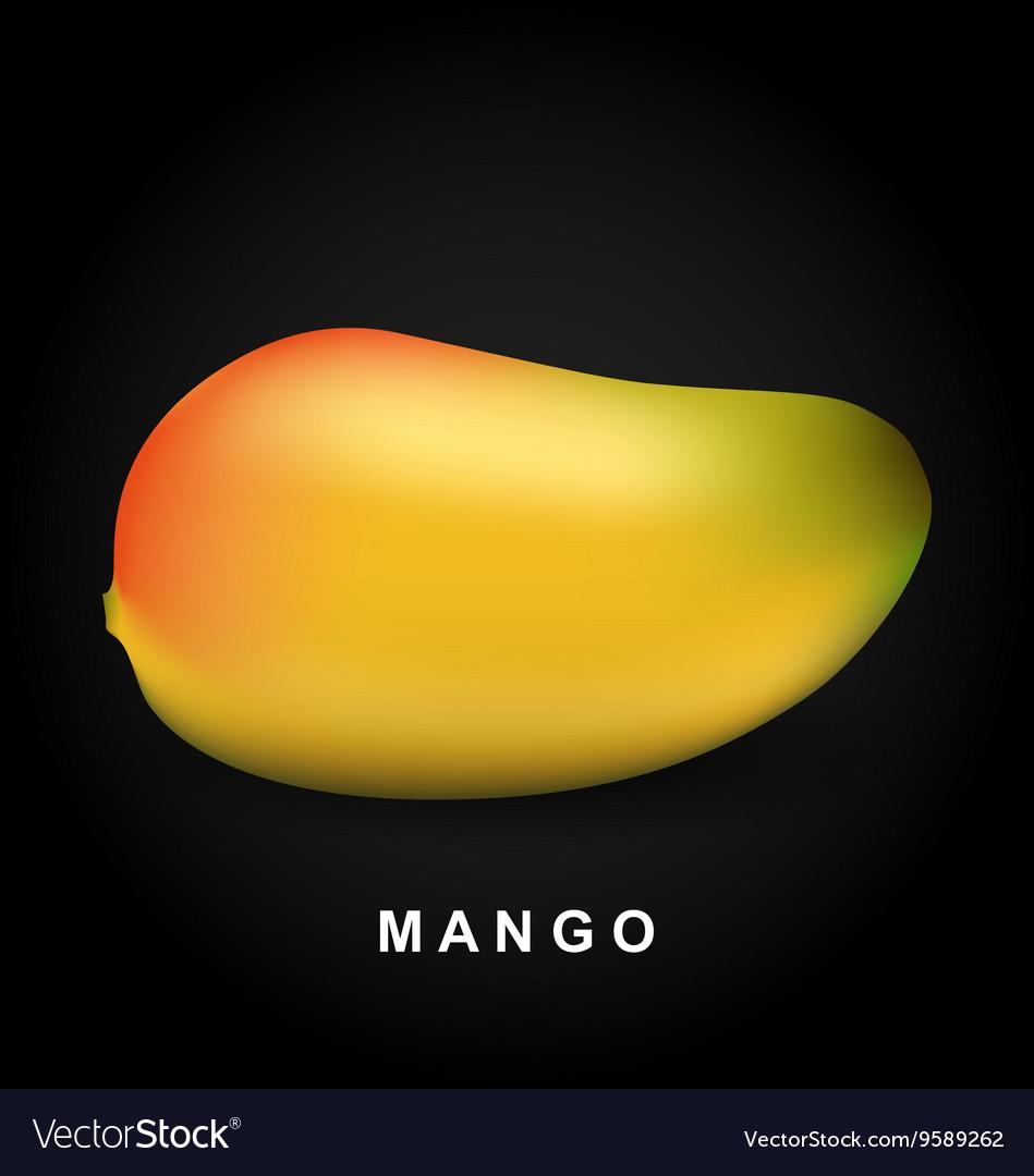 Mango fruit isolated on black background