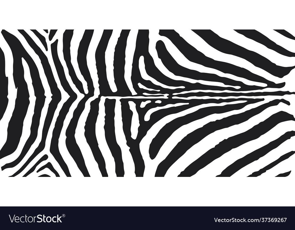 Zebra skin print black and white