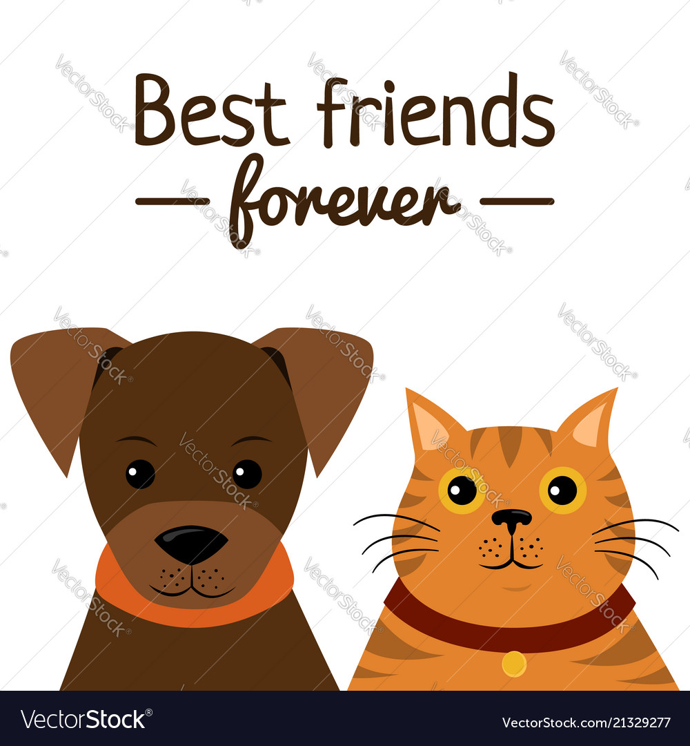 Cat and dog characters best friend forever