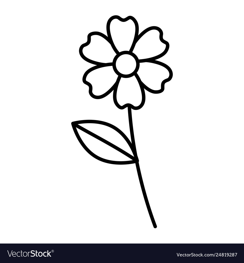 Beautiful Flower Drawing Monochrome Royalty Free Vector