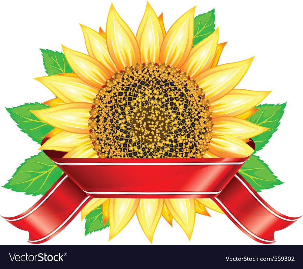 Label design with sunflower leafs and red ribbon