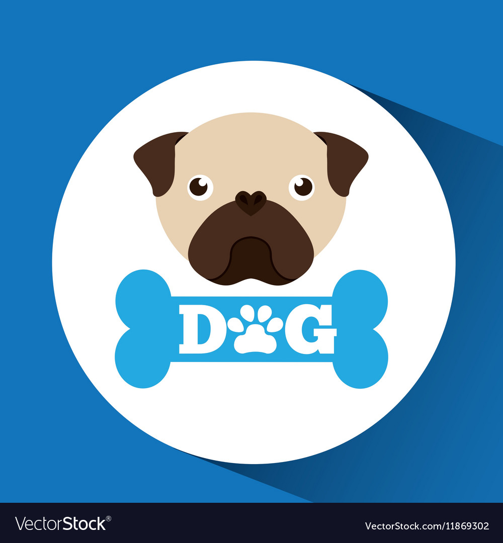 Lovely head puppy pug dog vector image