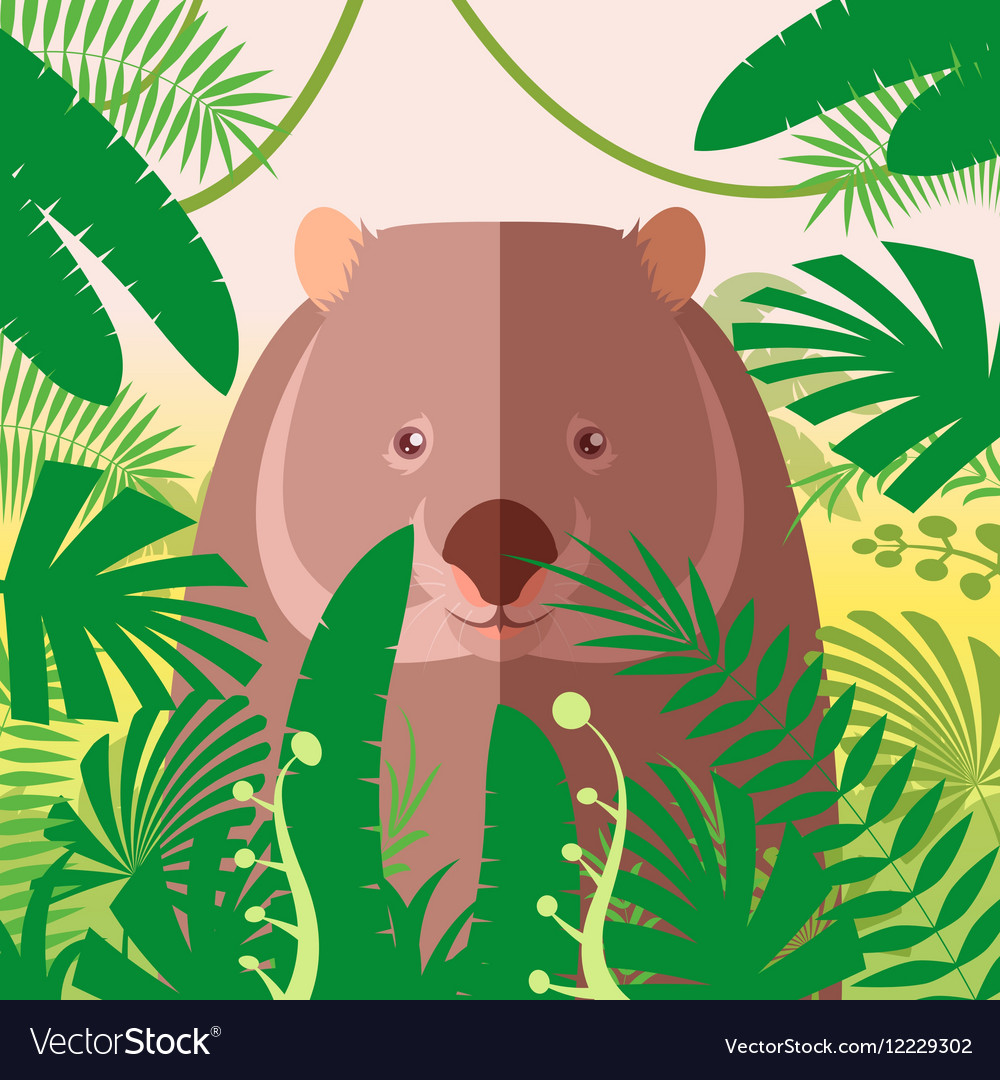 Wombat on the Jungle Background