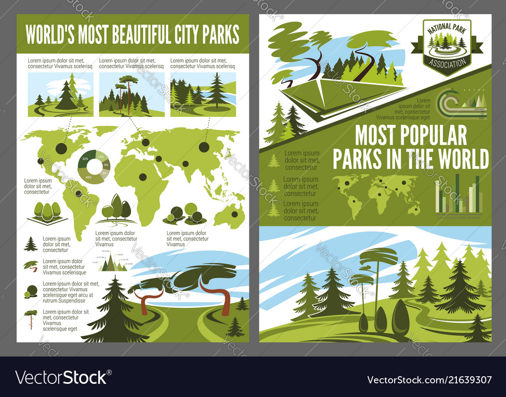 Landscaping design service infographic vector image - Landscaping Design Service Infographic Royalty Free Vector