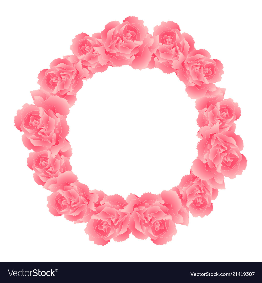 Pink Carnation Flower Wreath Royalty Free Vector Image