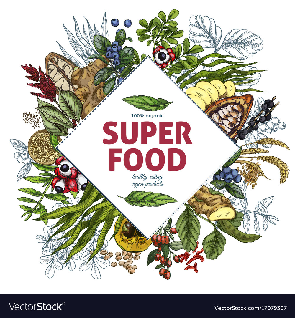 Superfood rhombus banner color realistic sketch vector image