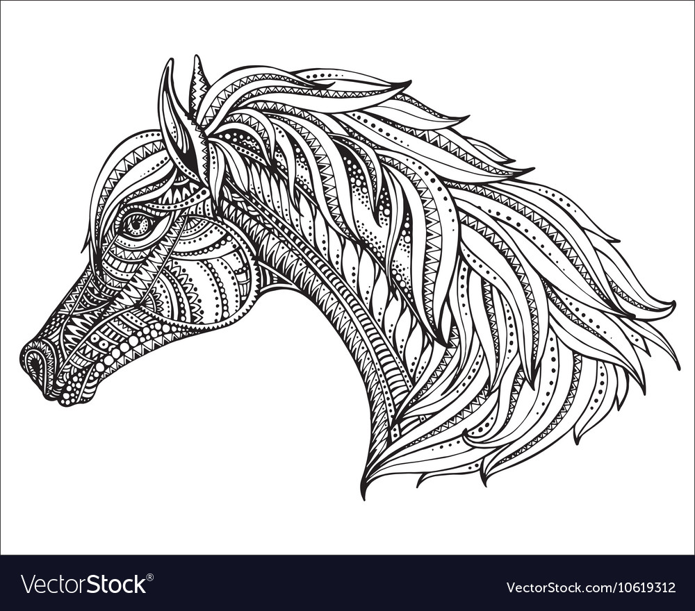 Hand drawn head horse in graphic ornate style