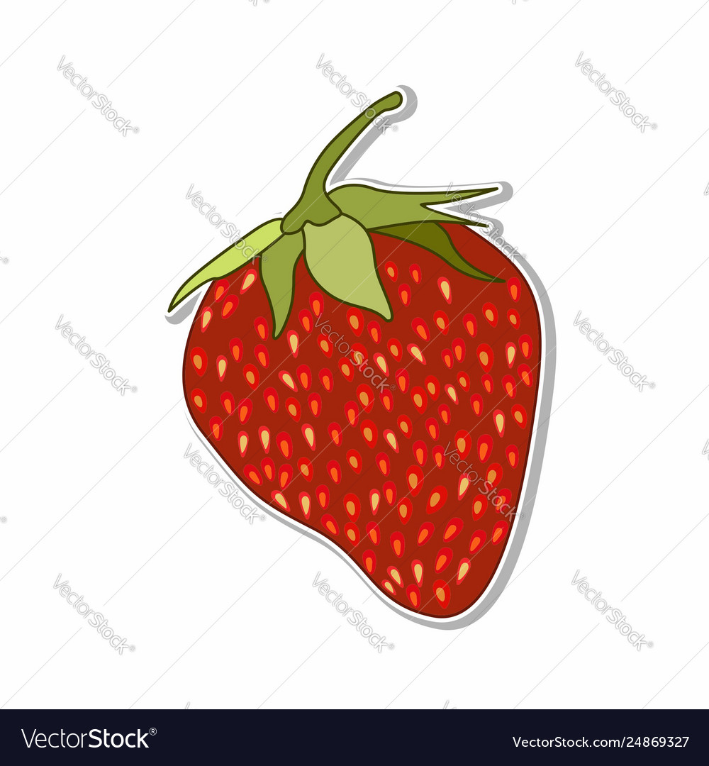 Isolated strawberry sticker concept