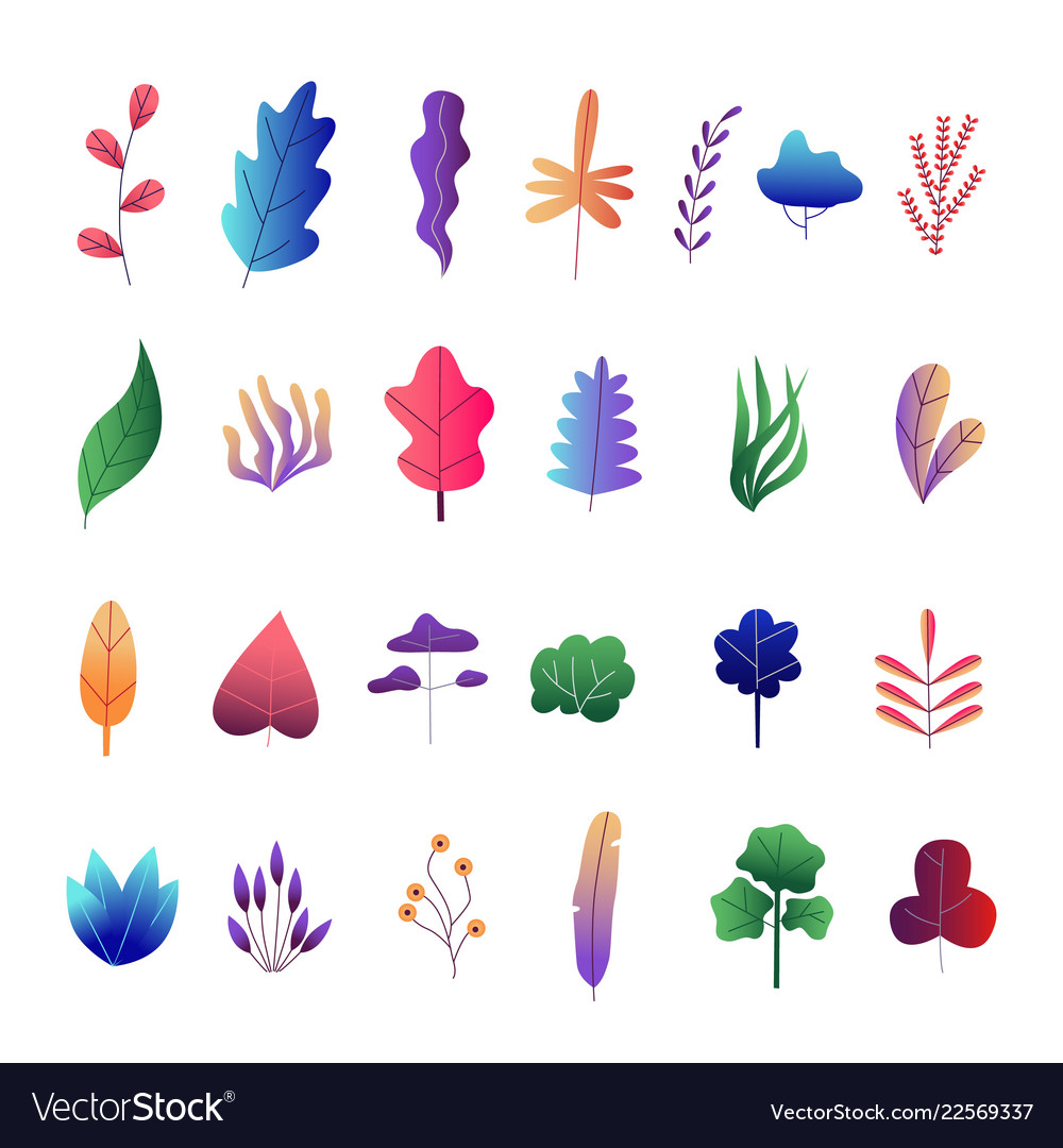 Flat abstract colorful leaves set