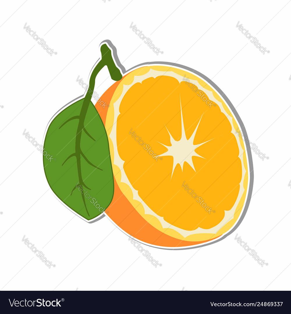 Orange fruit sticker concept