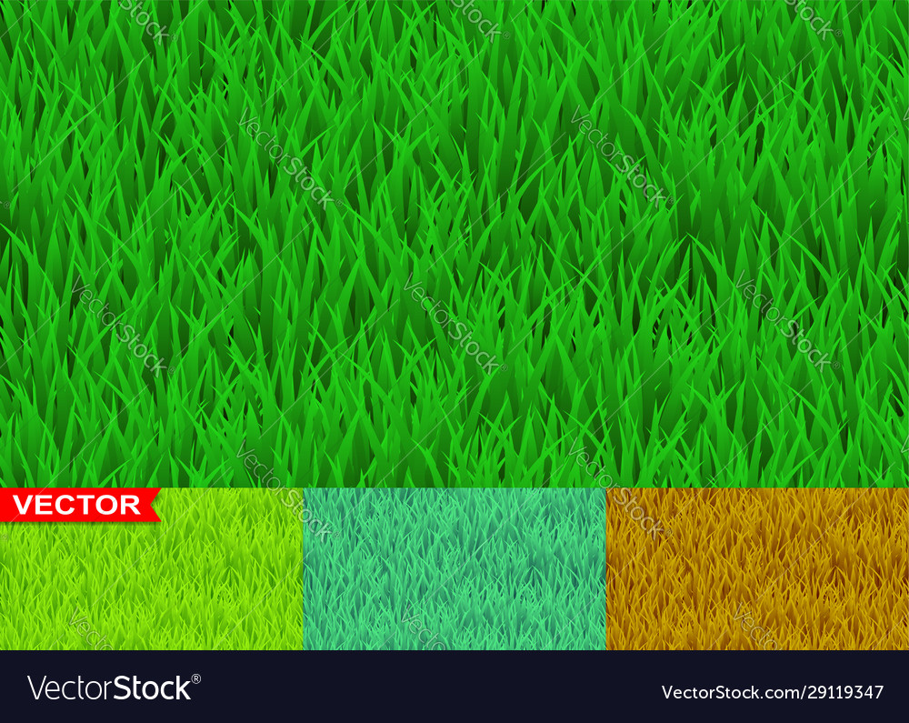 green and savanna grass seamless pattern vector image vectorstock