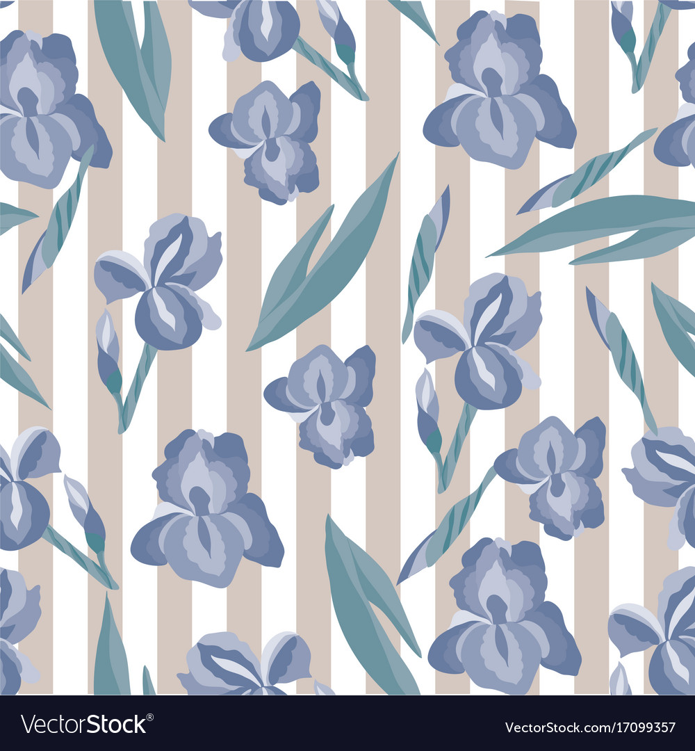 Floral pattern with irises on the striped vector image