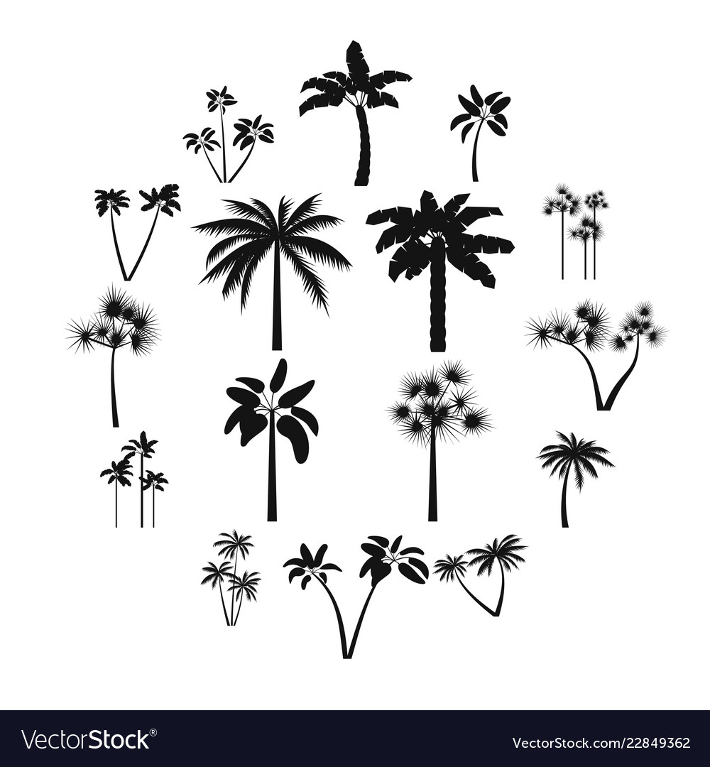 Palm tree icons set simple style