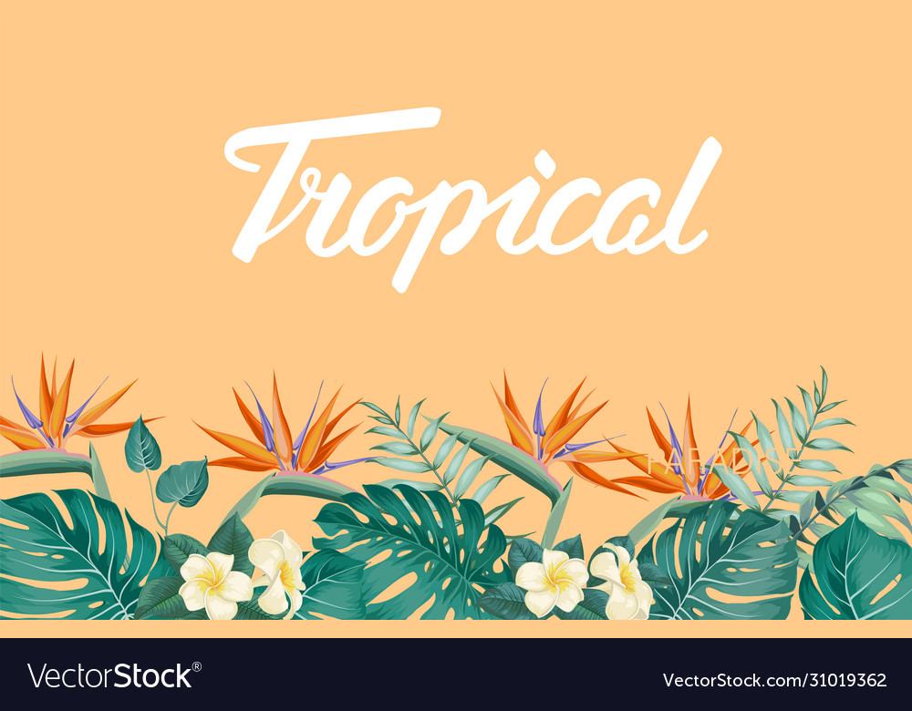 Tropical flower frame with summer holidays text