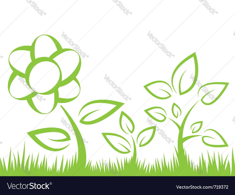 Flower grass vector image