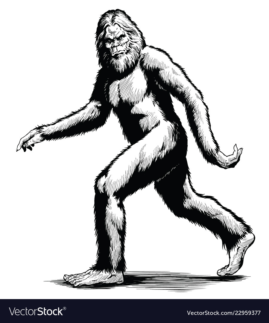 Walking sasquatch black white