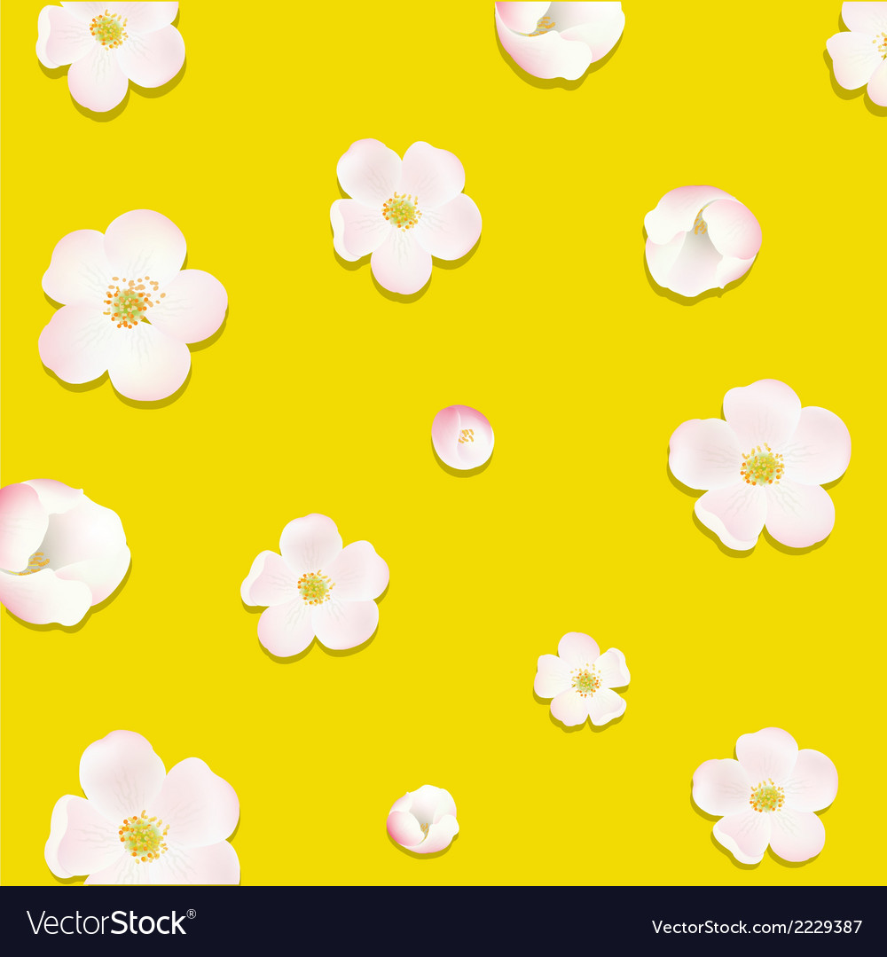 Apple Tree Flowers Poster vector image