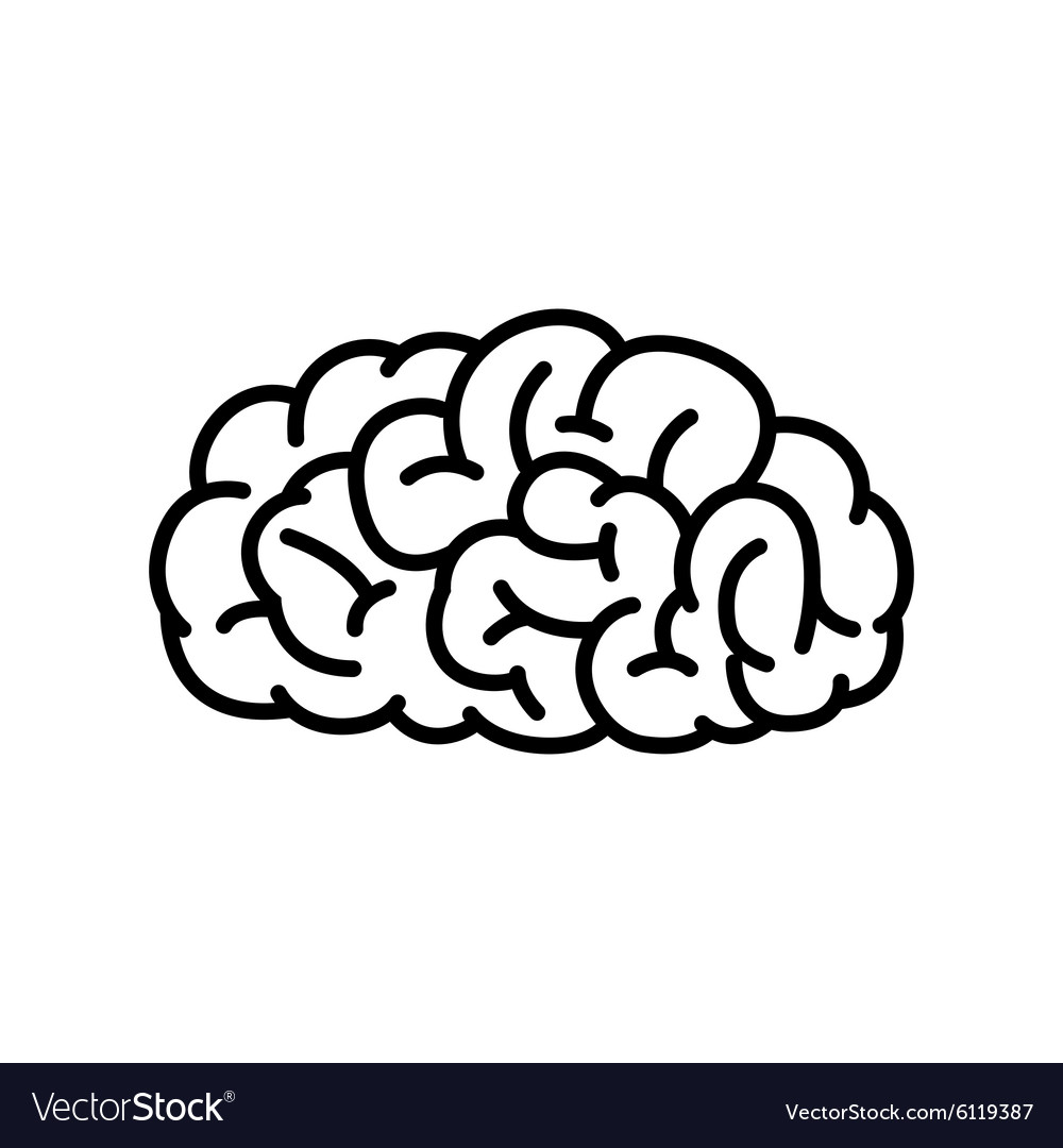 outline human brain royalty free vector image vectorstock rh vectorstock com brain vector free download brain vector graphic