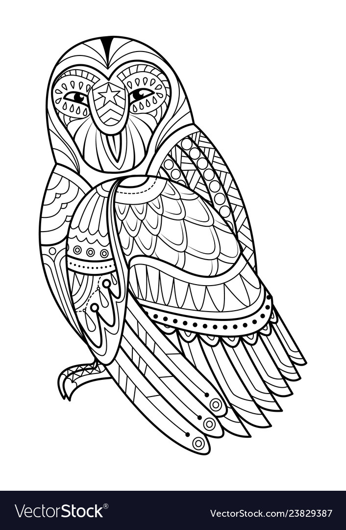 Owl hand drawn for coloring book