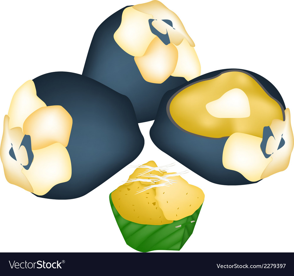 Thai Toddy Palm Cake with Toddy Palm Fruits vector image