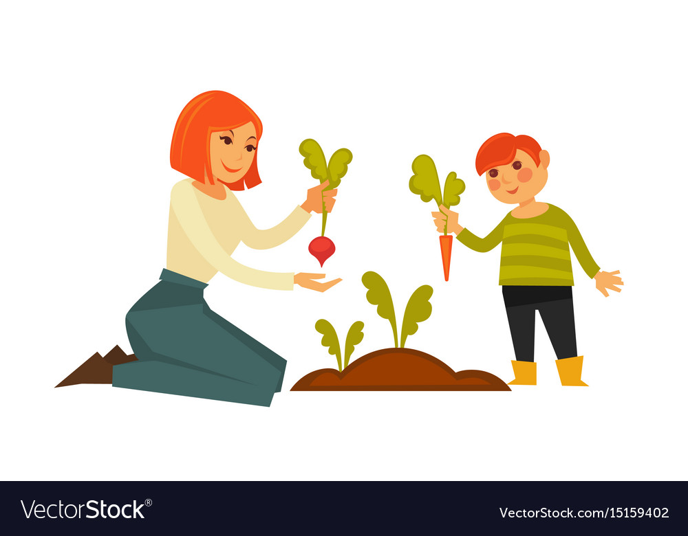 Mother and small son pulling carrot and beet from vector image