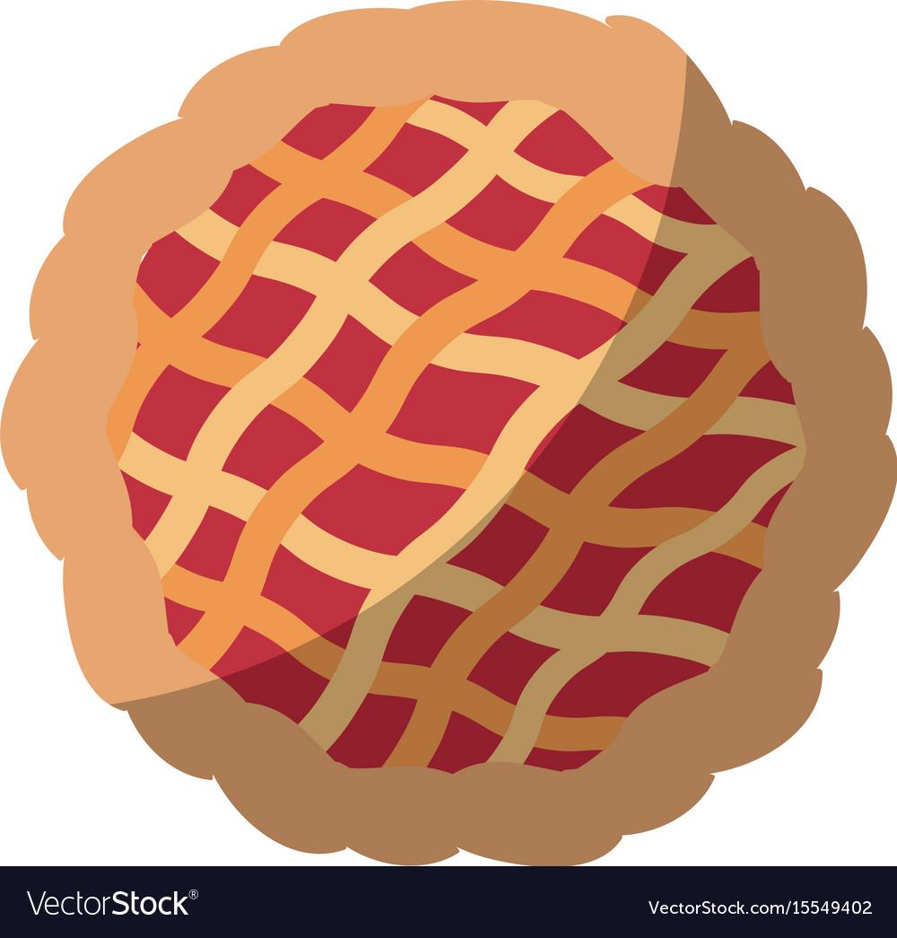 Pie icon image vector image