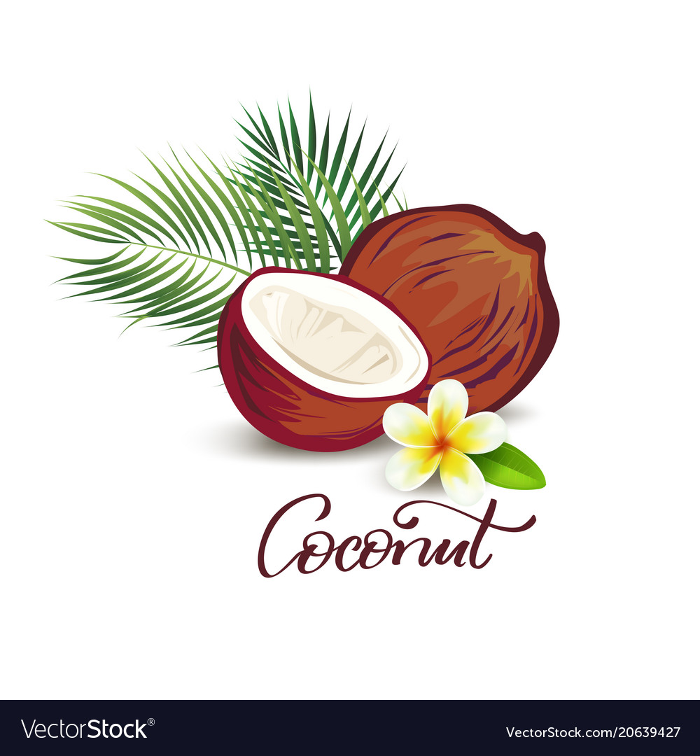 Coconut and plumeria flower