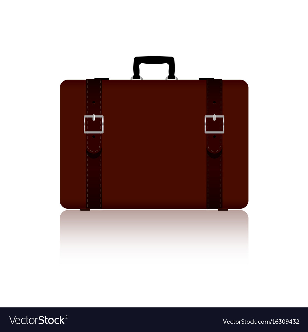 Travel bag with belts in brown color one variant vector image