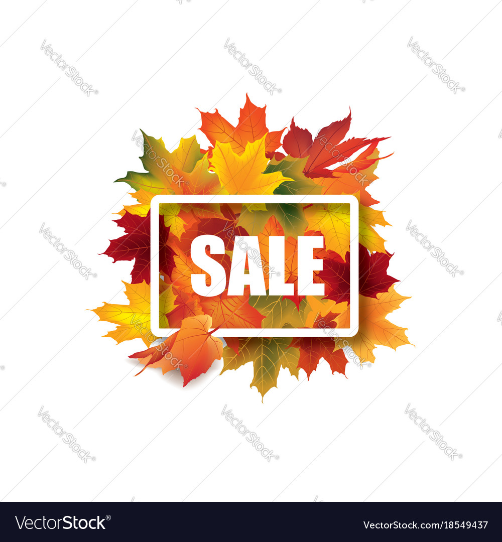 Fall leaves sale sign autumn leaf frame nature