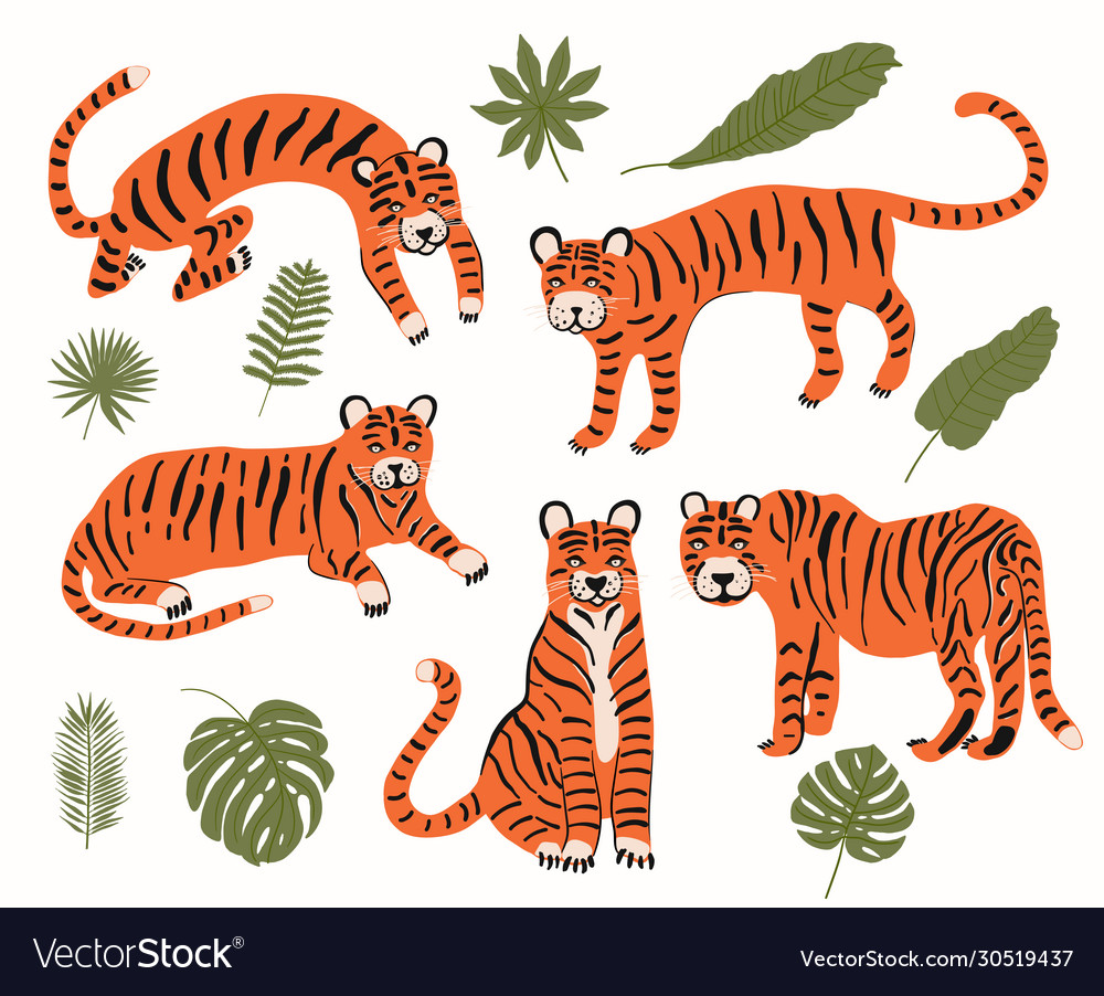 Set with tigers and tropical leaves to decorate