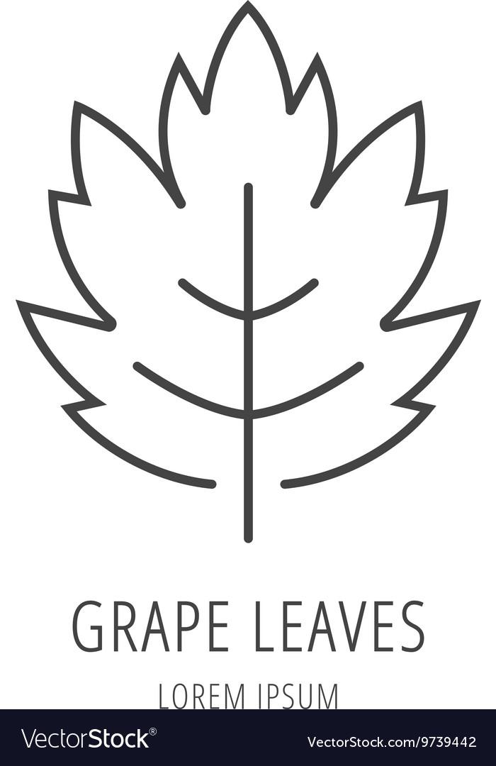 Simple Logo Template Grape Leaf Vector Image