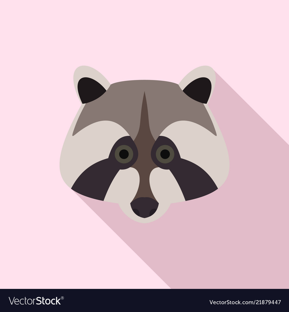 Raccoon icon flat style