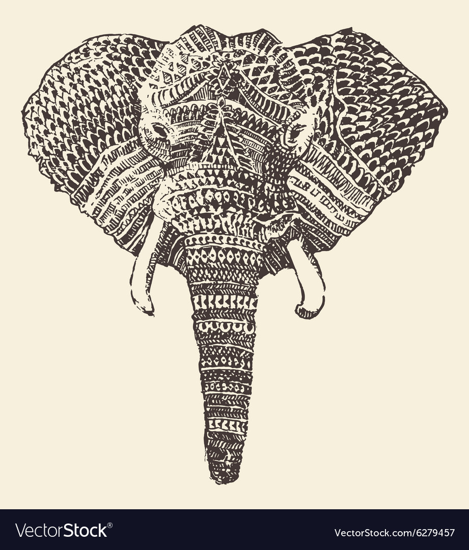 Ethnic elephant head hand drawn sketch