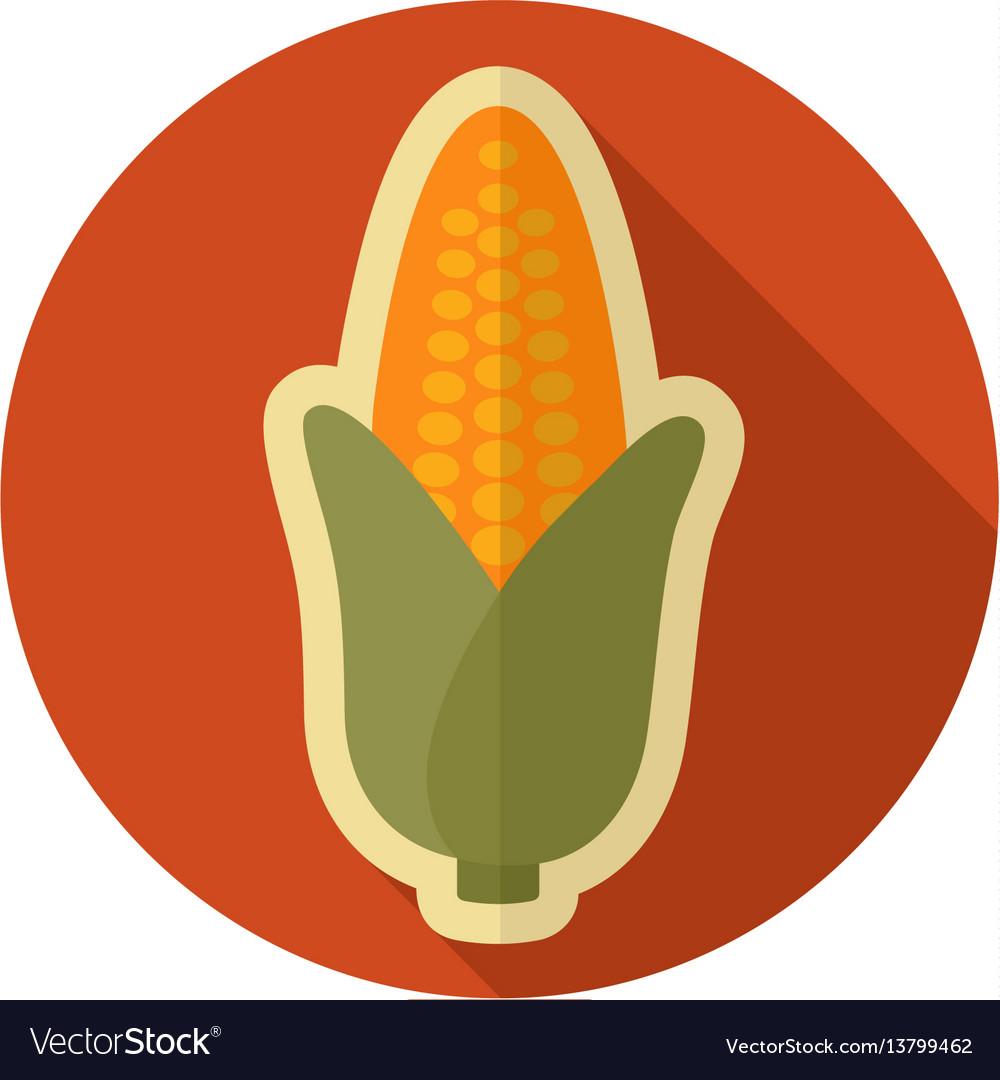 Corn flat icon vegetable