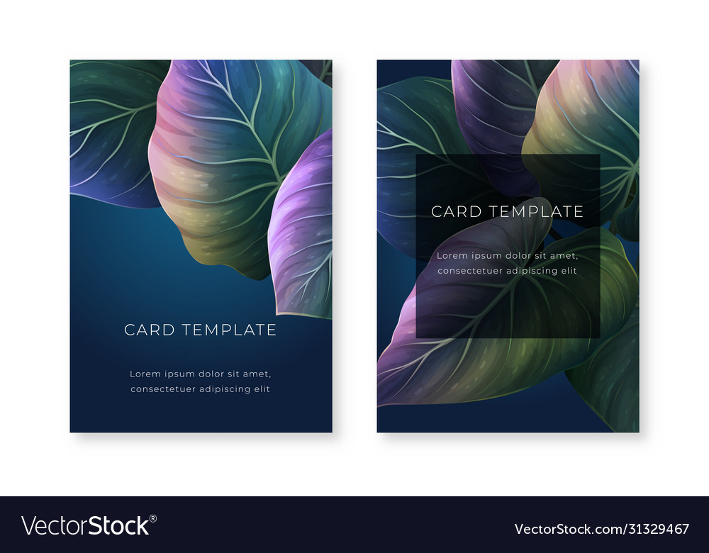 Night summer leaves card template