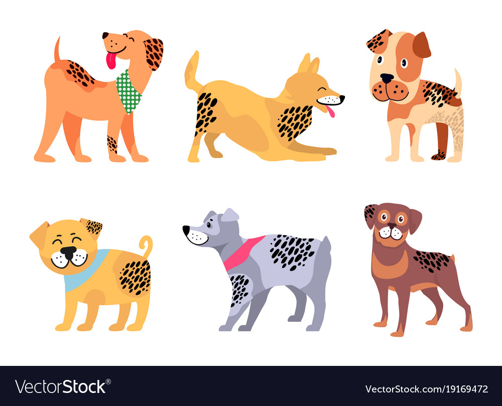 Playful padigree dogs with unusual fur color set