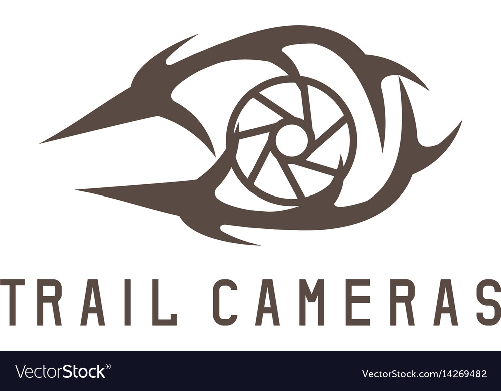Deer horns and trail camera design template vector image