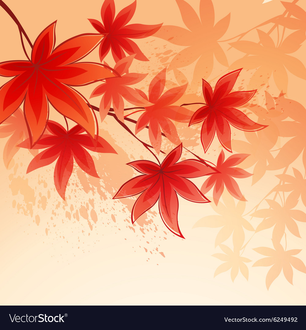 Autumn leaves background of sky