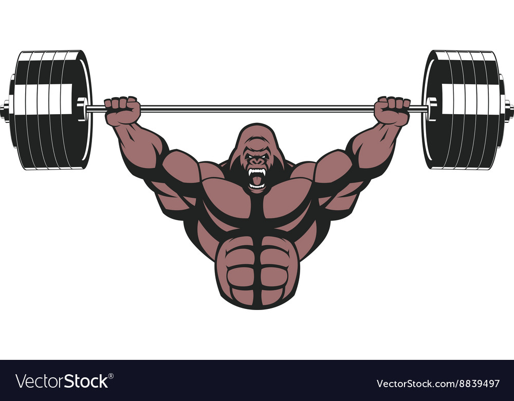 ferocious gorilla with a barbell royalty free vector image