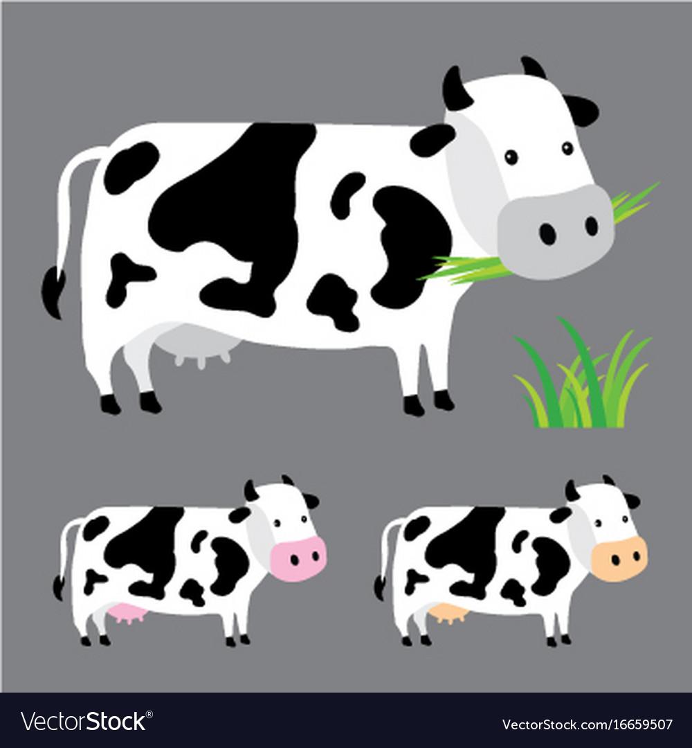 Cow Farm Cute Character Cartoon Design Vector Image