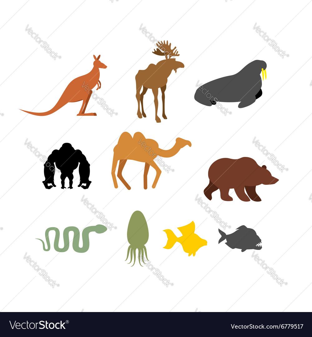 Set of wild animals on white background