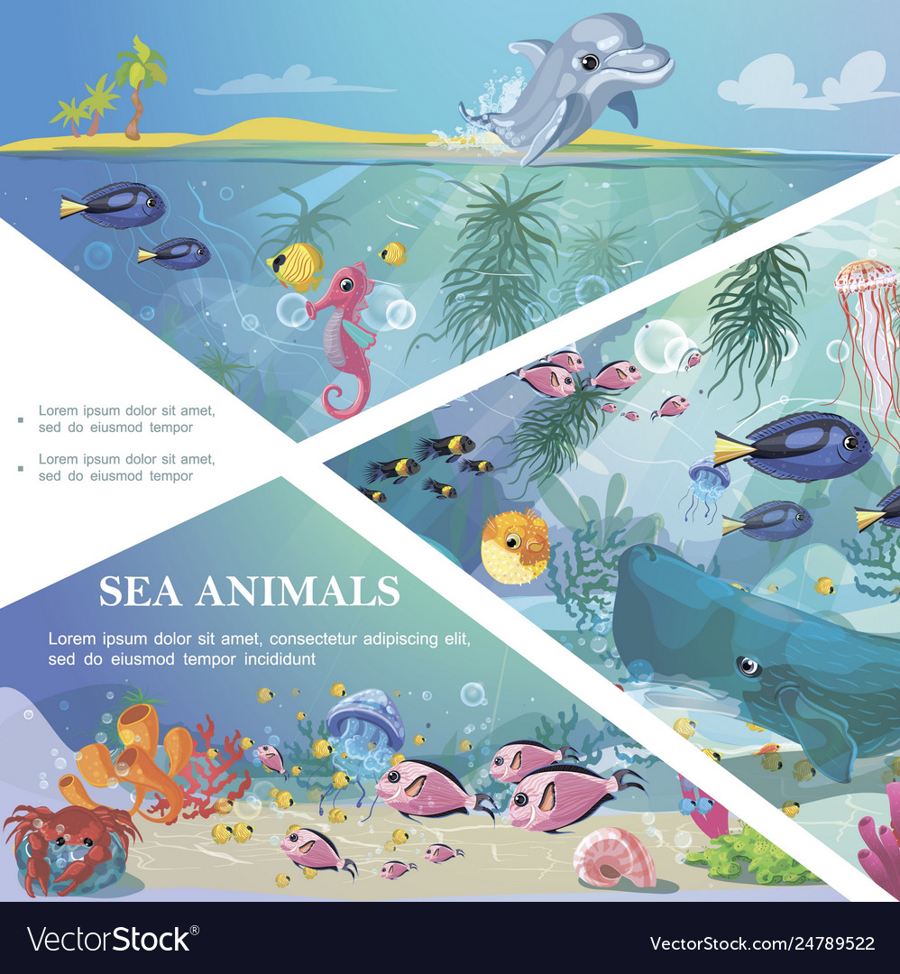 Cartoon underwater life template