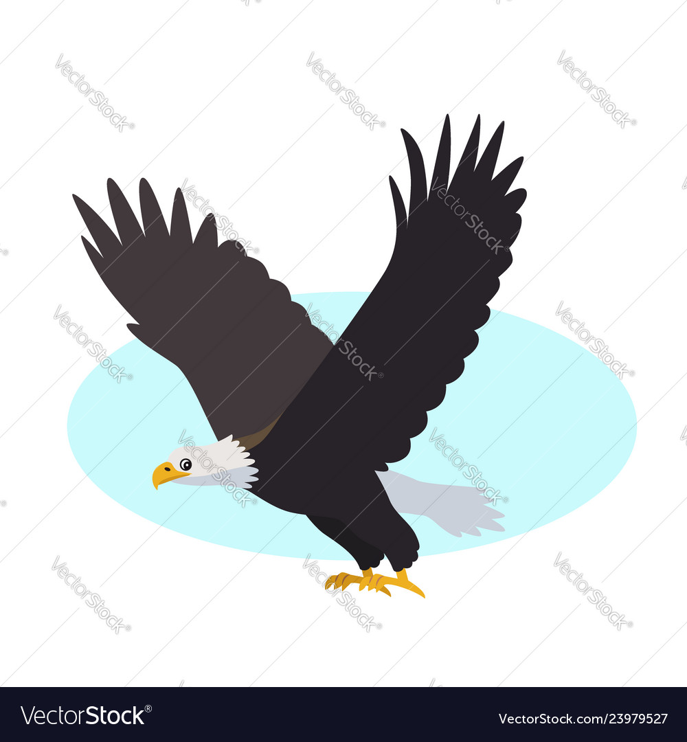 Bald eagle icon isolated on white background