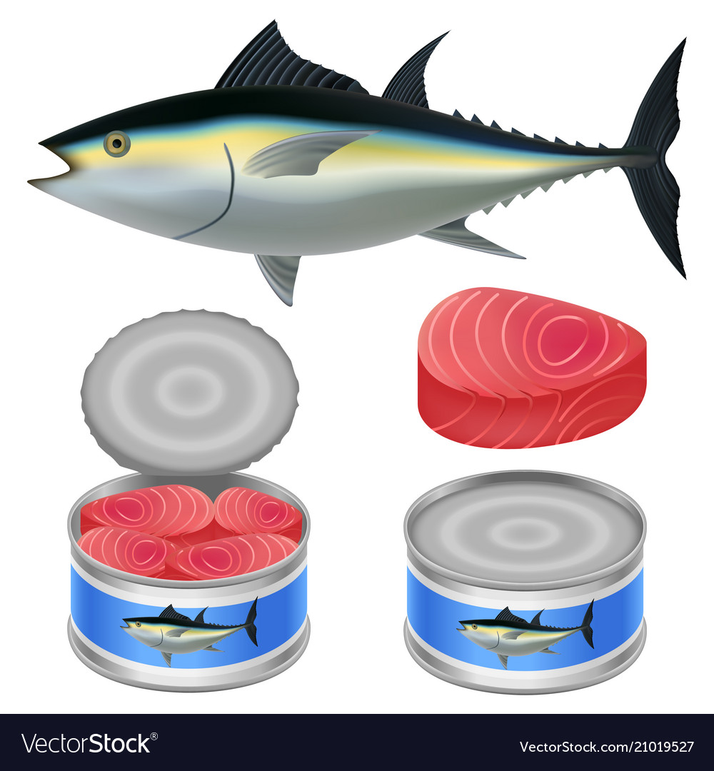 Tuna fish can steak mockup set realistic style Vector Image