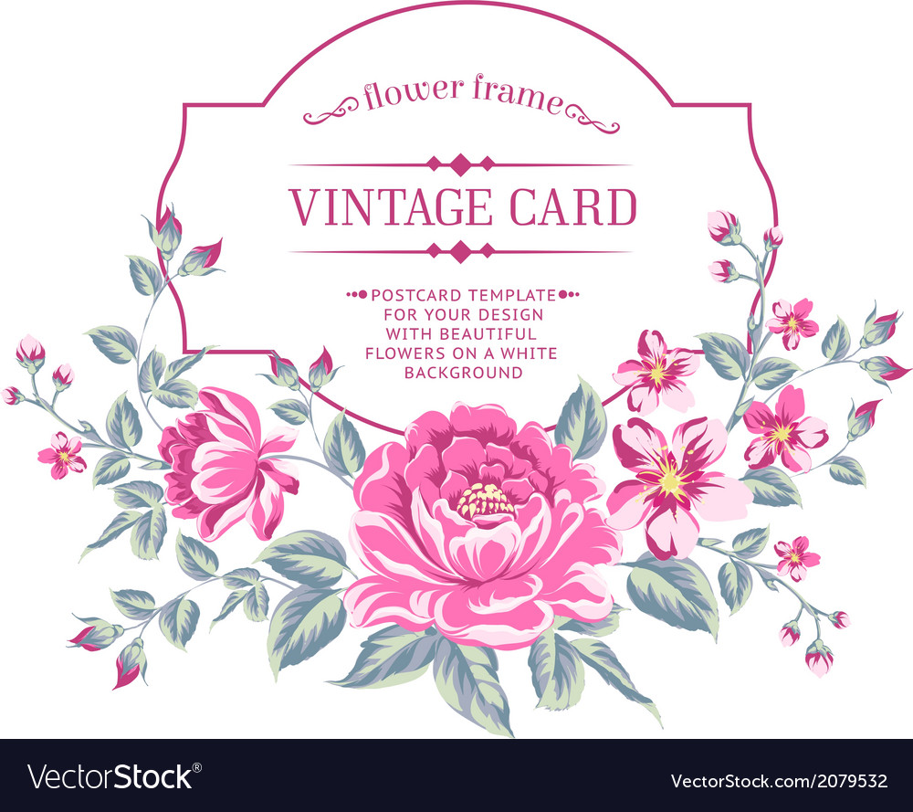 Luxurious color peony background vector image