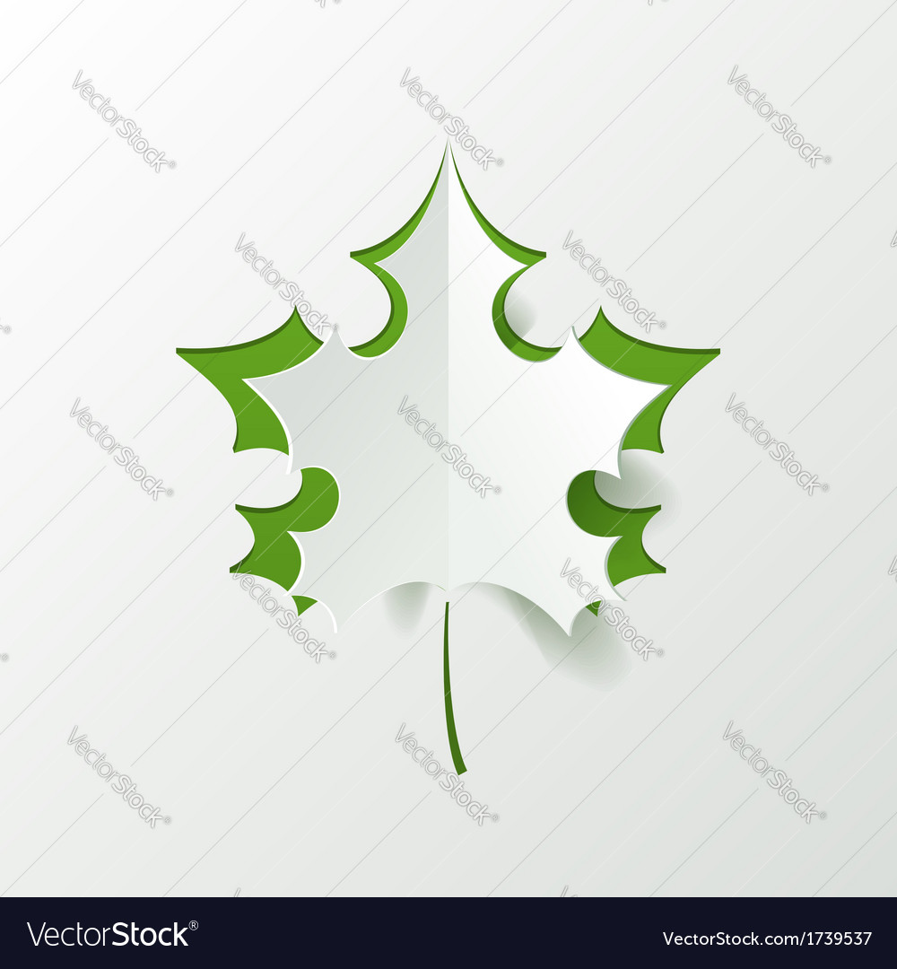 Abstract Green Maple Leaf Isolated on White