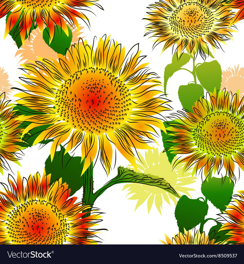Hand Drawn Sunflower Background